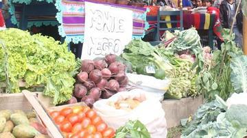 Reportan aumento del precio de los productos agrícolas