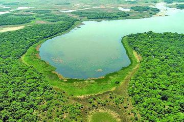 Petroleras presentan solicitudes para explorar en áreas protegidas