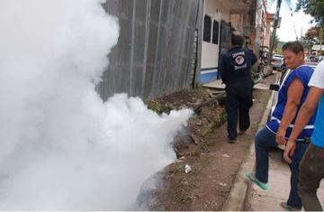 "Reportan quinto caso del virus del Zika ""importado"" en Bolivia"