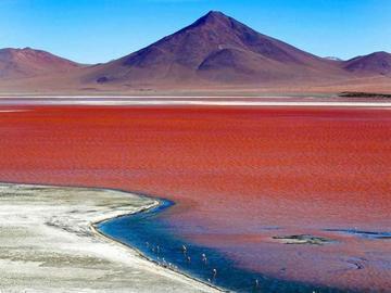 Las lluvias incrementan el volúmen del agua de la Laguna Colorada