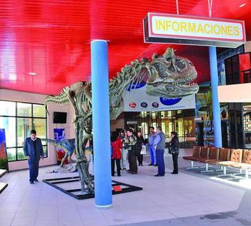 Implementan la terminal aérea con material promocional turístico