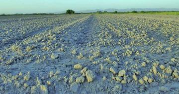 Comunarios piden ayuda por efectos de la sequía