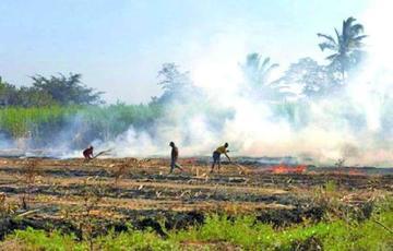 Beni: hay más de mil focos de calor y alarma por humo