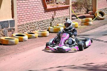 Hoy se conocerá a los ganadores del nacional de karting