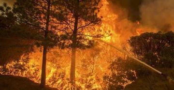 Suspenden autorización de quemas de pastizales y desmontes en el país