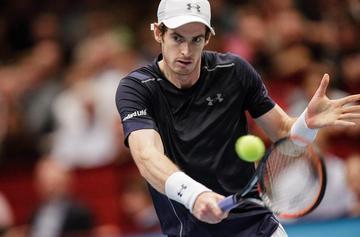 Murray se medirá a Ferrer en semifinales