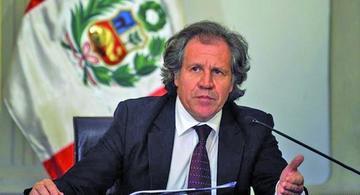 Denunciarán a Almagro ante el Consejo de OEA por injerencia