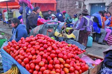 Sube precio de verduras en mercados de Potosí