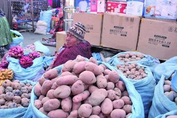 La sequía afecta al agro y hay temor que suba el precio de los alimentos