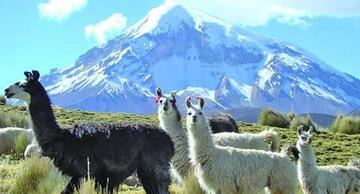 La Alcaldía de Oruro firmará convenio con Boltur y crear agencia de turismo