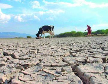 La ONU sugiere atender a zonas débiles a desastres