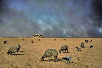 Yihadistas queman petróleo para evitar bombardeos en Siria