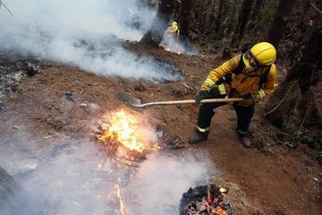 La ayuda internacional llega a Chile para sofocar los incendios