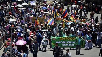 Cocaleros de los Yungas prevén cerco al Legislativo contra ley