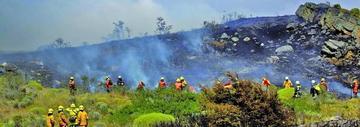 Más de 18.000 efectivos combaten en Chile 131 incendios forestales