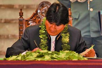Evo promulga ley que garantiza producción de coca de por vida