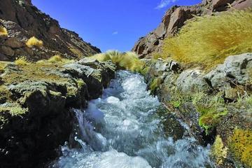 Expertos advierten que Chile está agotando el agua del Silala