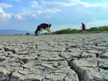 Gobierno dispone $ 70 millones para los afectados por la sequía