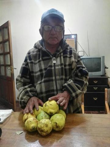 Piden apoyar la producción de las frutas en Betanzos