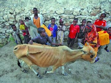 Unicef prevé aumento de niños malnutridos en Somalia en 2017
