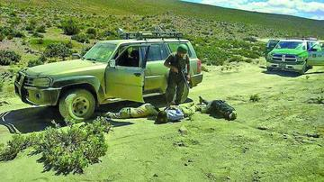Los 9 detenidos admitirán que traspasaron la frontera con Chile