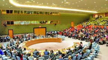 ONU: Bolivia demanda a países cumplir acuerdo de desminar fronteras