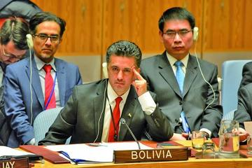 Bolivia deja la presidencia temporal del Consejo de Seguridad de la ONU