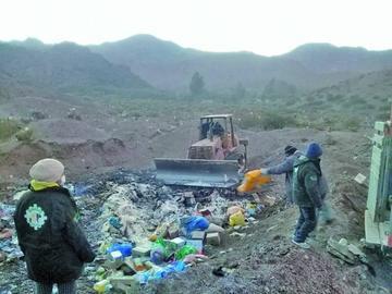 Senasag destruye más de nueve toneladas de productos decomisados