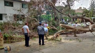 Tormenta tropical causa cinco personas fallecidas en EE.UU.