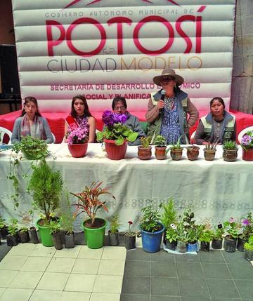 Mañana  abre Feria  de Flores  de Altura