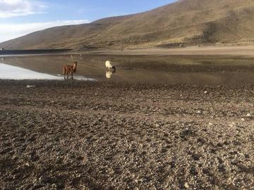 Resurge la polémica por reservas de agua en lagunas del Kari Kari