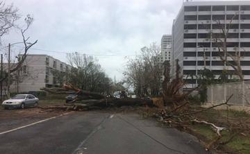 Ofelia será huracán el jueves lejos de zonas habitadas del Atlántico