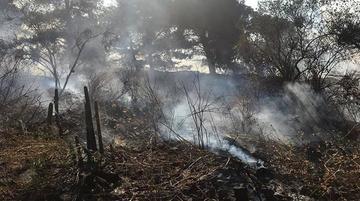 Controlan  un incendio forestal en Cochabamba