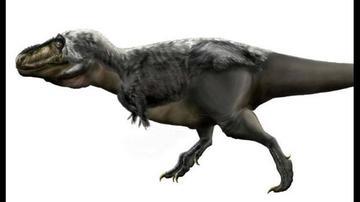 Hallan que brazos del T-rex eran útiles