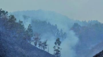 Sofocan incendio en el Parque Tunari que arrasó 250 hectáreas