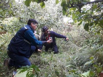 Granizo arrasa con los cultivos agrícolas en la comunidad El Molino