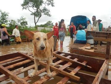 Evalúan inicio de clases en colegios afectados por las lluvias
