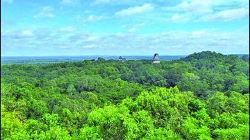 Un láser penetra en selva para mostrar  el imperio perdido de los mayas