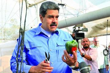 Piden investigar si Maduro dio dinero a campañas electorales