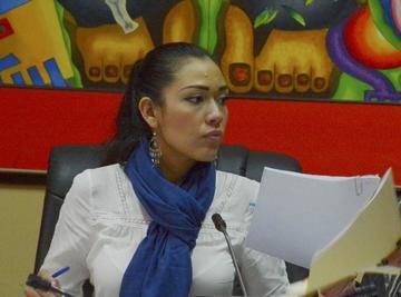 Senadora del MAS dice que Incahuasi es de Santa Cruz