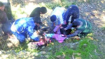 Una familia completa  queda herida tras colisión