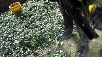 """Informe afirma que la producción de cocaína en Bolivia """"aumentó"""""""