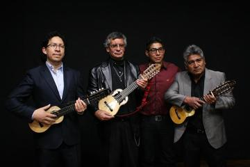 Expertos del charango ofrecen  concierto