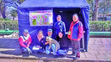 El municipio de Potosí presenta la más alta cantidad de casos de rabia