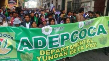 Cocaleros anuncian bloqueo de vías desde el 10 de septiembre