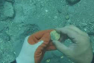 Repartirán tesoro de galeón San José