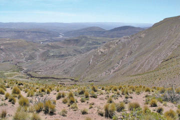 Avanza megaproyecto de plata en el municipio de Tacobamba