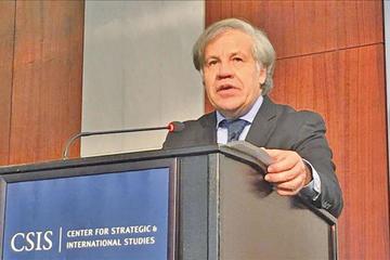 Primarias: la OEA enviará una misión de observadores