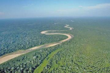 Tribunal de Defensa de la Naturaleza: Polígono 7 amenaza al Tipnis