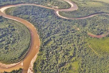 Tipnis: lluvias afectan los cultivos de 24 comunidades